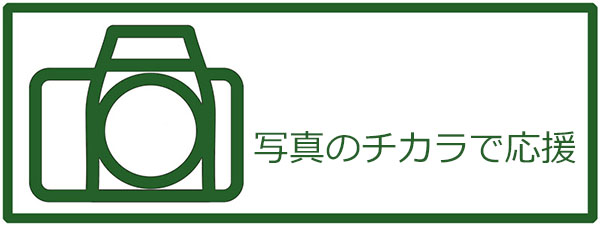 logo_600.jpg